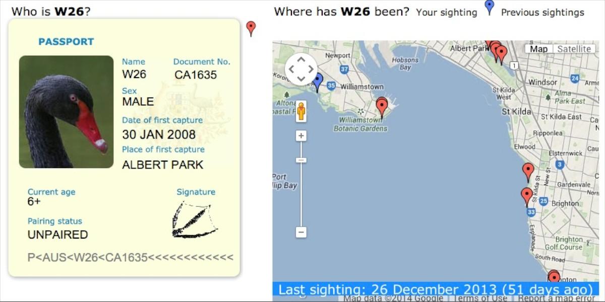 Swan W26 Passport
