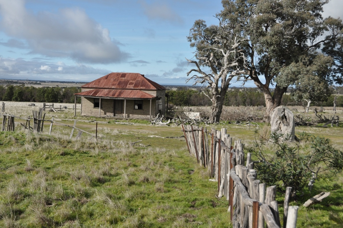 """Fence line at """"Glenrowan"""" note the metal star pickets to hold it up."""