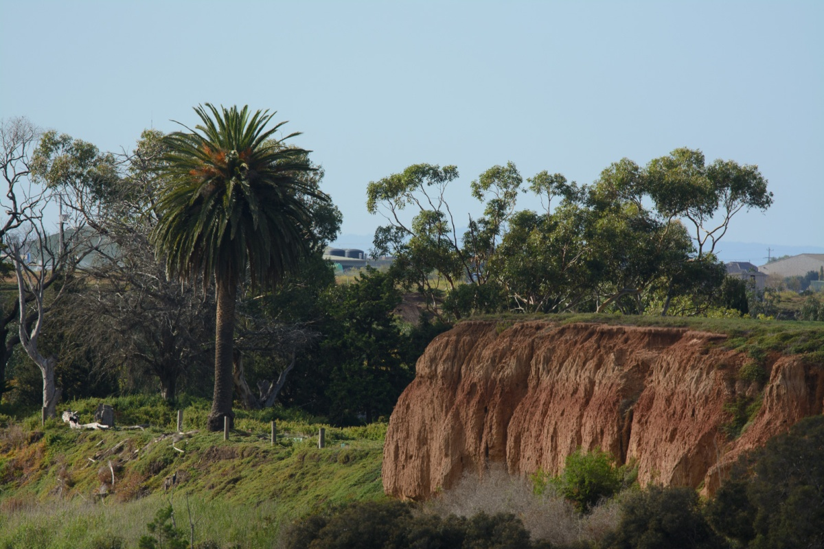 A view along the sandy cliff face. The area we are heading is down toward the right hand side.