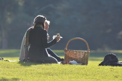 Picnic in the Park. Welcome Warm Sunshine
